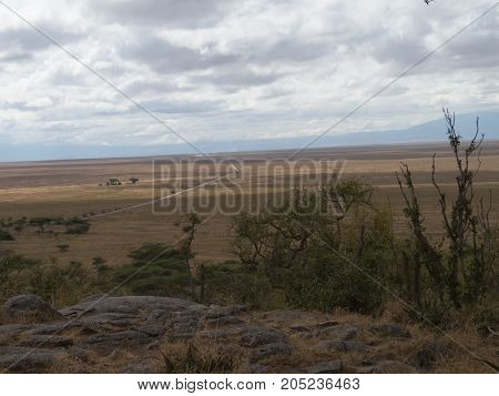 A road to infinity in the grassland of Serengeti that goes to Ngorongoro crater