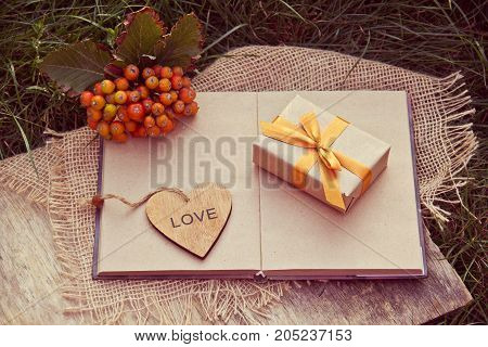 Gift box with golden ribbon heart and an open book on the green grass. Autumn concept. Autumn gifts.