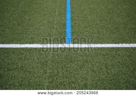 The green lawn surface of a soccer field with the side line and the center line.