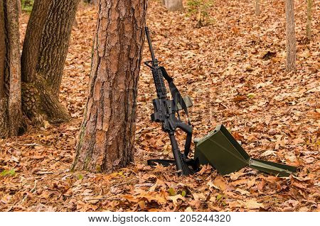 Assault rifle M16 and box of ammunition standing near a tree on dry leaves in the autumn forest