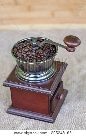 Coffee grinder full of roasted coffee beans - from the top