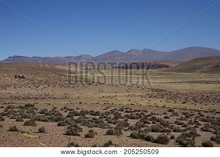 Wide valley leading to the River Lauca high on the Altiplano of northern Chile in Lauca National Park.