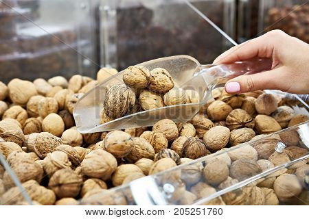Buyer With Scoop Takes Walnuts In Shell At Store