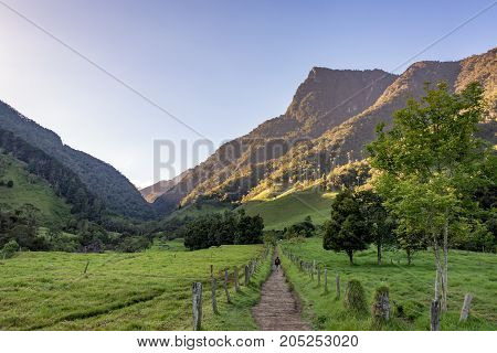 Hiker with a beautiful dramatic landscape in Cocora Valley near Salento Colombia