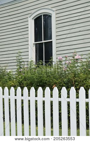 Picket Fence With Window