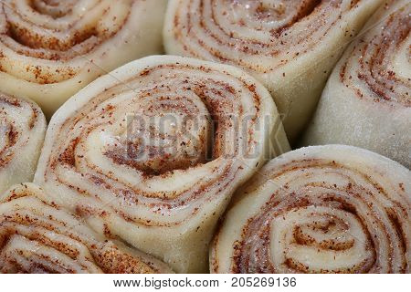 Cinnamon rolls rolled and panned and ready to bake