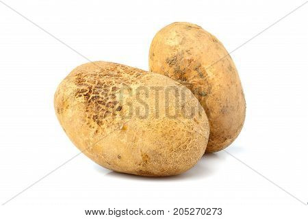 Two raw potatoes isolated closeup on white background.