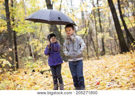Two Happy children playing in beautiful autumn park