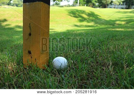 Golf Ball beside Marker Pole Immovable Obstruction Rule 24