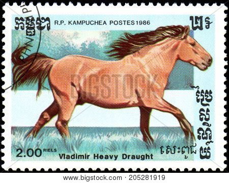 R.P. KAMPUCHEA - CIRCA 1986: A stamp printed in R.P. Kampuchea shows a Vladimir Heavy Draught horse, series breeds of horses