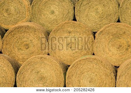 Close up of large round hay bales stacked on each other and photographed at eye level.