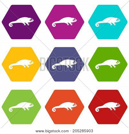 Chameleon icon set many color hexahedron isolated on white vector illustration