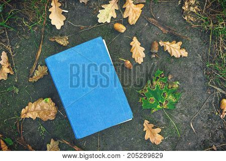 Book on the ground covered in yellow maple and oak leaves. Back to school. Education concept. Beautiful autumn background. Picturesque composition. Weekend in the Park.