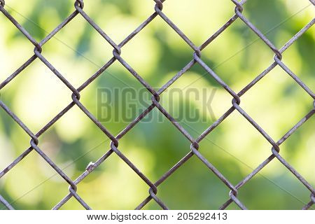 Background of the metal mesh fence . In a park in the nature