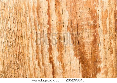 old wooden background . Photo as an abstract background