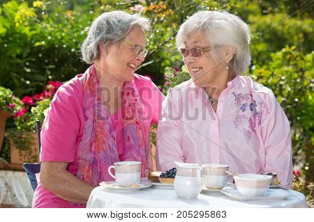 Two Senior Women Chatting At Table
