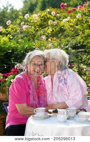 Two Senior Women Chatting In Garden