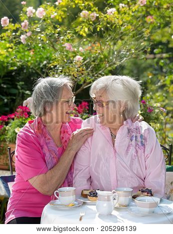 Two Cheerful Senior Women Having Tea In Garden