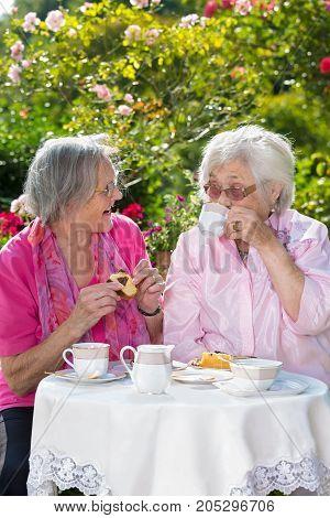 Two Senior Women Sitting In Garden Over Tea