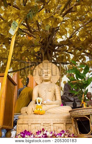 Buddha statue in Thailand. Under the Bodhi tree