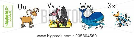 Children vector illustration of funny urial, vulture, whale and x-ray fish. Animals zoo alphabet or ABC.