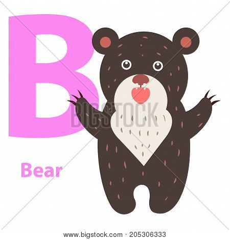 Alphabet for children B letter bear cartoon icon isolated on white. Toy teddybear with wide open paws, educational sticker for children. Alphabet with funny cartoon animals vector illustration banner.