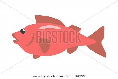 Red fish cartoon character. Fish flat vector isolated on white background. Aquatic fauna. Fish icon. Illustration for zoo, aquariums shop ad, nature concept, children book illustrating
