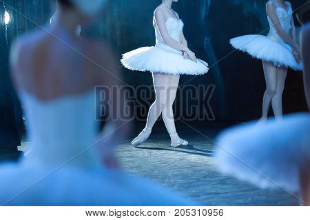 passion, agility, dramatic art concept. bright beam of projector single out one of the beautiful female ballet dancers who performing famous scene of ballet swan lake