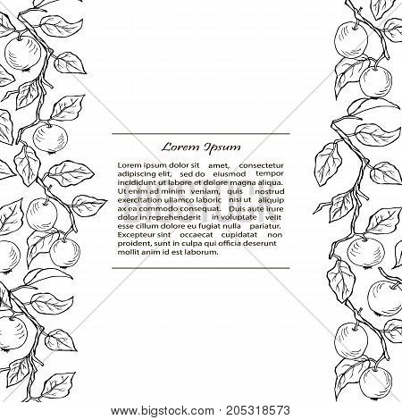 Template with apple branches. Text copy frame template. It can be used for flyers, cover, invitation, birthday, greetings, Thanksgiving, Shana Tova card.Vector illustration.