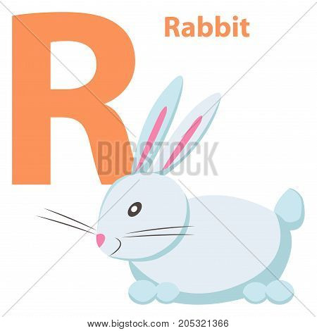 Babies English ABC letter R with white rabbit cartoon style. Little fluffy beast with pink nose and round short tail. Cute funny card for primary education vector illustration typography concept poster