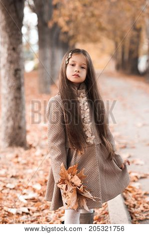 Stylish baby girl 4-5 year old wearing trendy winter jakcet holding fallen leaves in park. Looking at camera. Autumn season.