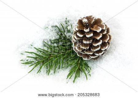 Pinecone In The Snow christmas decoration in winter