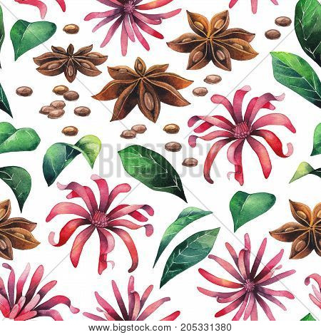 Watercolor star anise flower. Hand painted seamless pattern