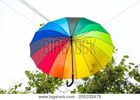 Bright umbrella in festive decoration of city. Rainbow umbrella in sky above trees. Avenue of flying umbrellas. Mood of joy and happiness