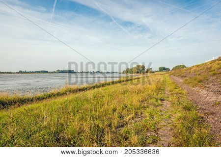 Bank of the wide Dutch river Waal next to the dike. It is early in the morning of a sunny day in the late summer season.