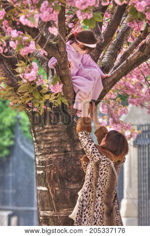 France, Paris - Spring 2008: A woman in a leopard coat helps a girl to descend to the ground from a tree with pink flowers. Spring. Paris. France.