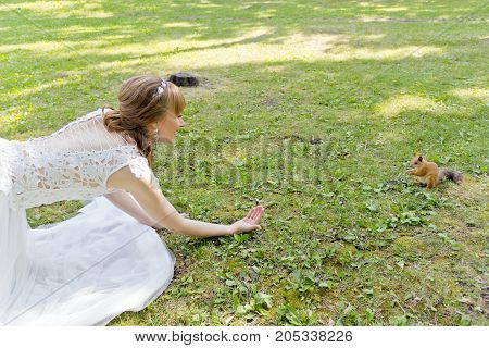 Bride in white lying on green grass next to the squirrel in summer