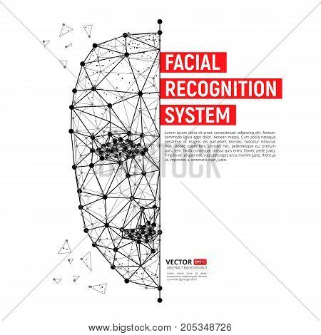 Biometric Identification Or Facial Recognition System Concept