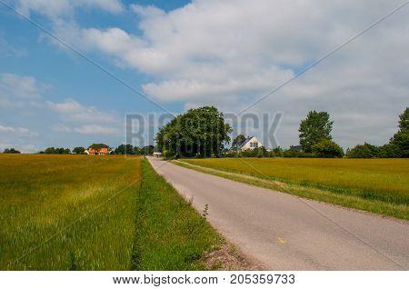 Rynkebakken Road Near Oerslev In The Danish Countryside
