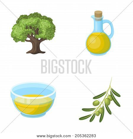 An olive tree, a branch with olives, a vessel and a jug of oil. Olives set collection icons in cartoon style vector symbol stock illustration .