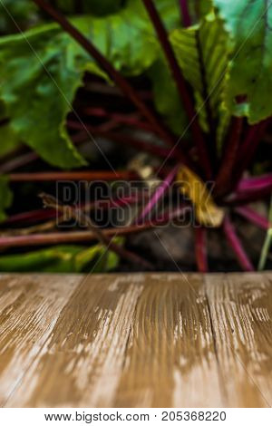 Empty Rustic Wood Table Top On Blurred Beetroot Background In The Garden. Can Montage Or Display You