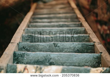 Old wooden staircase descending down. view from above