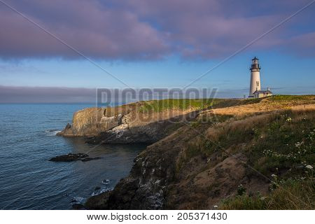 Morning Light Over Yaquina Head
