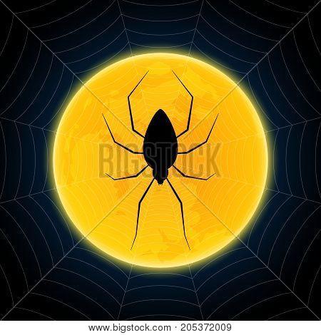 Halloween Spider Hanging Web Moon Background