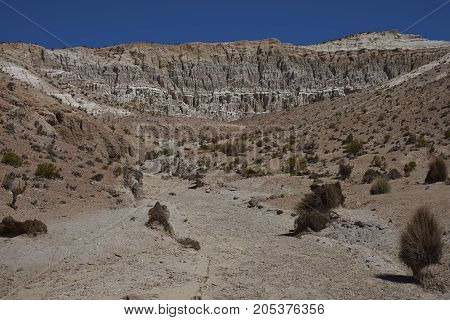 Eroded rock formations along Quebrada Chuba, a river valley high on the Altiplano of northern Chile in Lauca National Park.