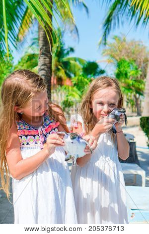 Adorable little girls with a small turtle in her hands in the natural reserve