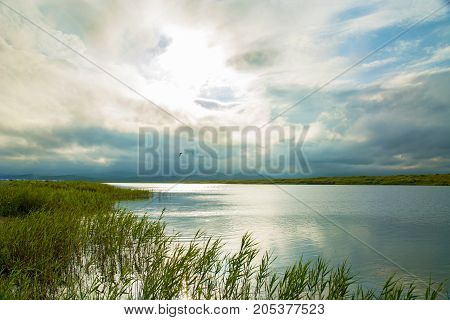 clear lake with green plants, thick dark clouds, the sunset breaks.