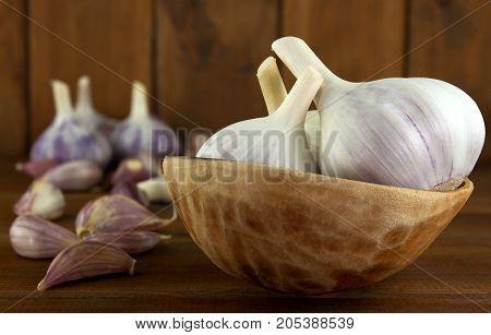 Garlic. Garlic Cloves and Garlic Bulb in vintage wooden bowl.