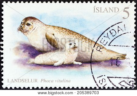ICELAND - CIRCA 2010: A stamp printed in Iceland shows Harbor seals (Phoca vitulina), circa 2010.