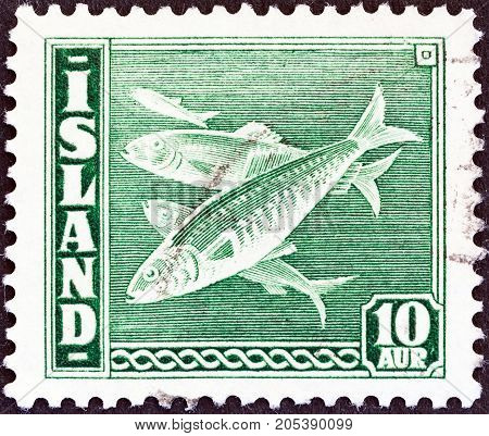 ICELAND - CIRCA 1939: A stamp printed in Iceland shows Atlantic herring (Clupea harengus) fish, circa 1939.